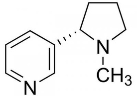 nikotin1